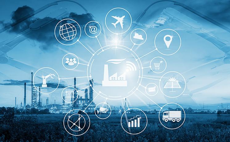 海外5社・国内50社以上の加工ネットワークで最適な商品をご提案!